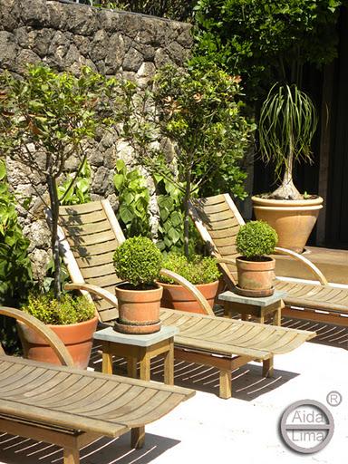 decorar jardim jogos:Buxinhos topiados plantados em vasos de cerâmica. Projeto de Gilberto