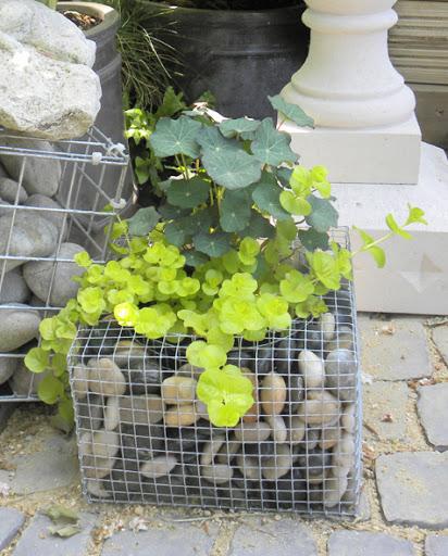 enfeites japoneses para jardim:Um vaso com pedras e tela. Criativo e diferente. Já vi algo parecido