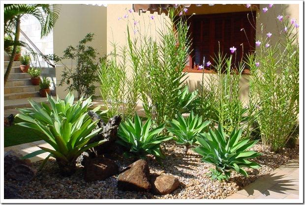plantas e jardins ornamentais:Jardins ornamentais