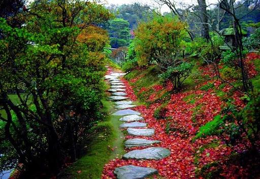 fotos de mini jardim japones conta história e mostra os diferentes