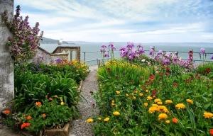 terraço com plantas
