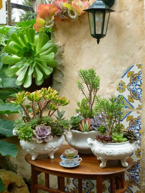 manaca de jardim em vaso : manaca de jardim em vaso: enfeites de jardim deixe um comentário fantasia no jardim