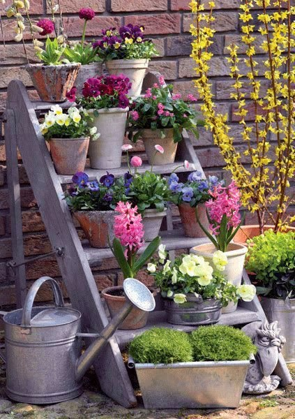 jardim ideias baratas:Escadotes…um jardim vertical low cost !!